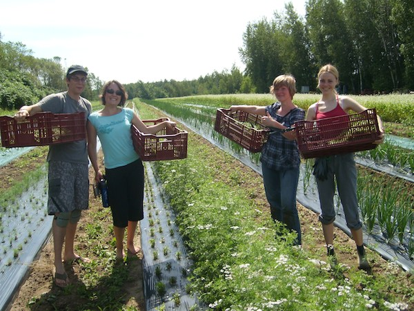 Slow-Travel-work-exchange-WWOOF-volunteers-in-Canada